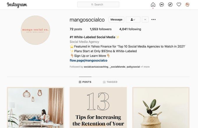Agencia de redes sociales Mango social co